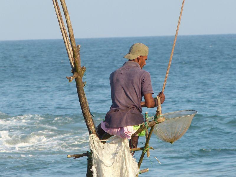 6642d9832 Rybári na koloch. Na južnom pobreží Srí Lanky ...