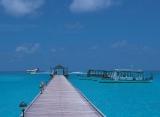 Holiday Island resort - Molo
