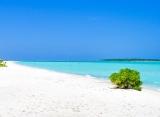 Sun Island Resort v pozadí