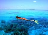 Komandoo Island Resort - Šnorchlovanie