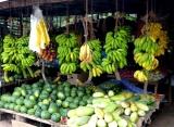 ovoce, Srí Lanka
