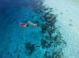 Vilamendhoo Island resort - šnorchlovanie