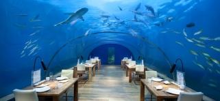 Podvodná reštaurácia Ithaa - Conrad Rangali Maledivy