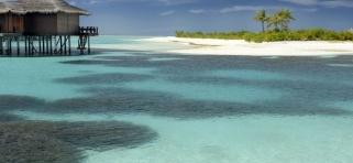 Naladhu - korálové zahrady