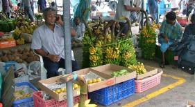 Trh v Male
