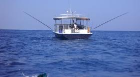 Rybolov Maledivy