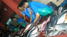 Rybí trh v Male