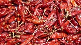 Chili papričky